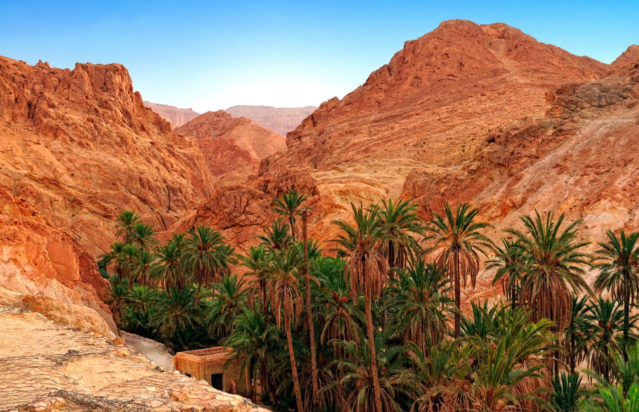 Saharska pustolovščina